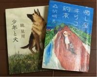 森沢明夫の本