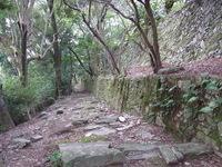 高積山ハイキング 6