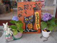 ゆめの紫陽花