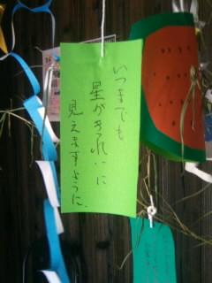 七夕笹の葉さ~らさら