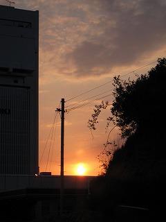 こんな夕陽撮れました♪