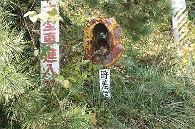 和歌浦高津子山の紅葉♪