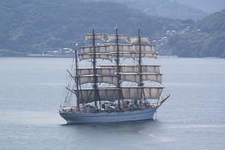 海王丸!!帆が綺麗です
