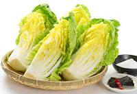 白菜の美味しい季節です♪