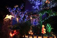 ともちゃんちのちっちゃなお庭のクリスマス