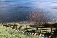 早春の淡路島