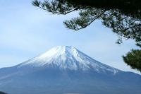 復元画像 富士山