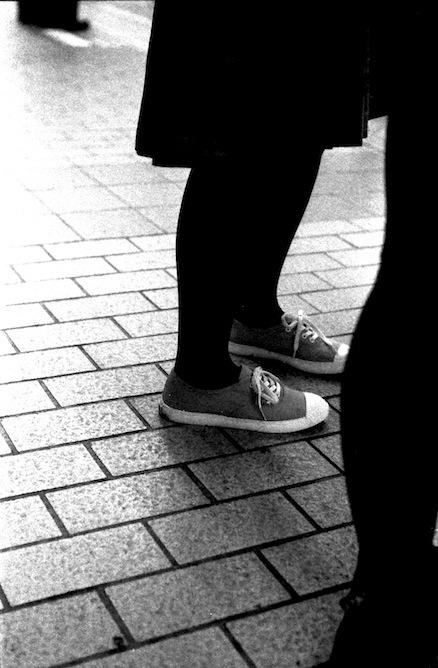 pattes noires