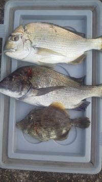 8月11日・・・釣り釣果①