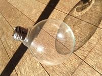 電球テラリウム