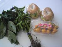 野菜&ベーグル