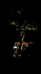 5/30~5/31AngelUnderTheSky2009