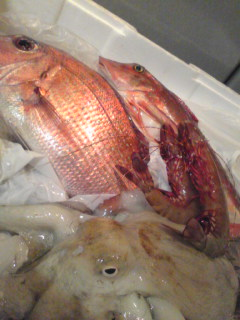 adc9806c96c4 Varietas delectat.:大漁節