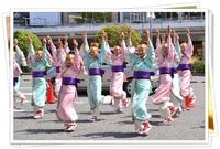 第10回紀州よさこい祭り!
