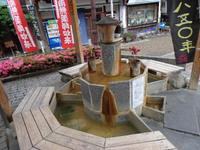 鳥取県三朝温泉から帰ってきました!
