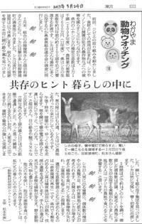 108 ニホンジカ調査