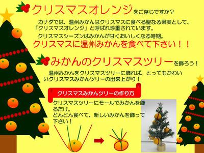 見て可愛い!食べて美味しい!クリスマスツリー♪