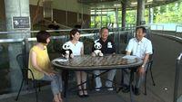 和歌山県テレビ広報番組「きのくに21」のお知らせ