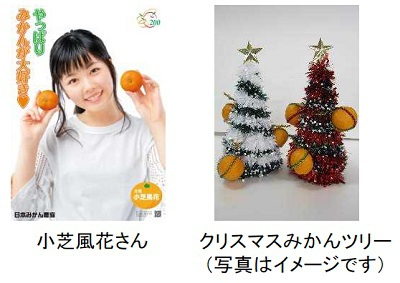 三越銀座店、伊勢丹新宿店で「和歌山フェア」を開催します!