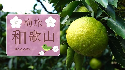 BS-TBS 番組「梅旅 -nagomi- 和歌山」の放送について