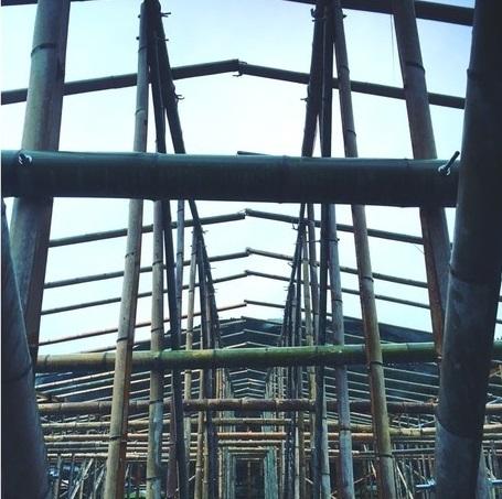和歌山県クラウドファンディング活用支援対象プロジェクト「竹ハウス」を新たに認定しました