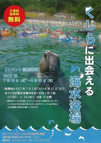 今年も開催!「くじらに出会える海水浴場」【太地町】