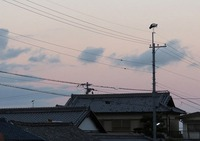 コウノトリ・J0057&J0050情報 2016/12/02 12:59:36