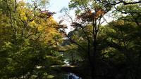 和歌山城紅葉亭庭園