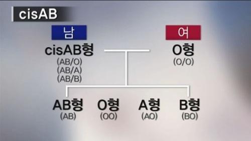 型 子供 型 の ab と o