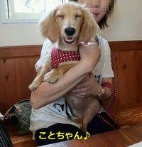 しつけ方教室in Cafe CHRP♪