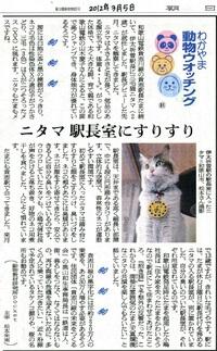 81 伊太祁曽駅長に就任した三毛猫「ニタマ」