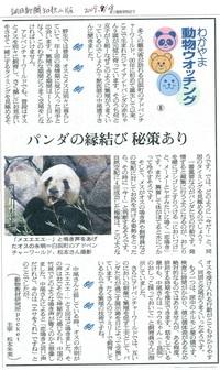 8 パンダの繁殖技術