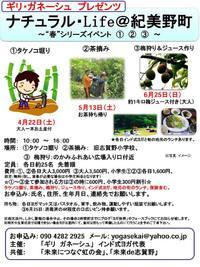 紀美野町自然体験イベント