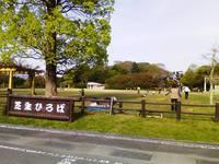 紀美野町自然体験