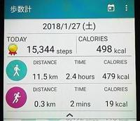 散歩12km