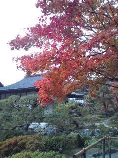 続・雨の京都