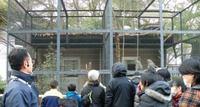 天王寺動物園でホネホネワークショップ