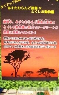 あすたむらんど徳島で剥製ウオッチングのお手伝い